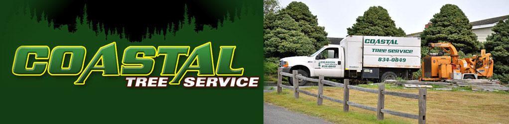 Coastal Tree Service Logo & Banner
